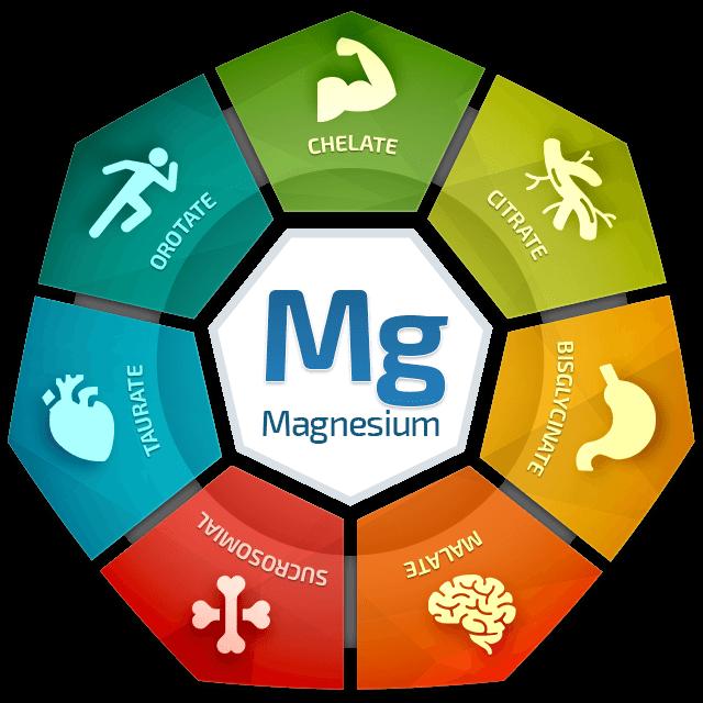 Ball - Magnesium Breakthrough -The Superhero Nutrient